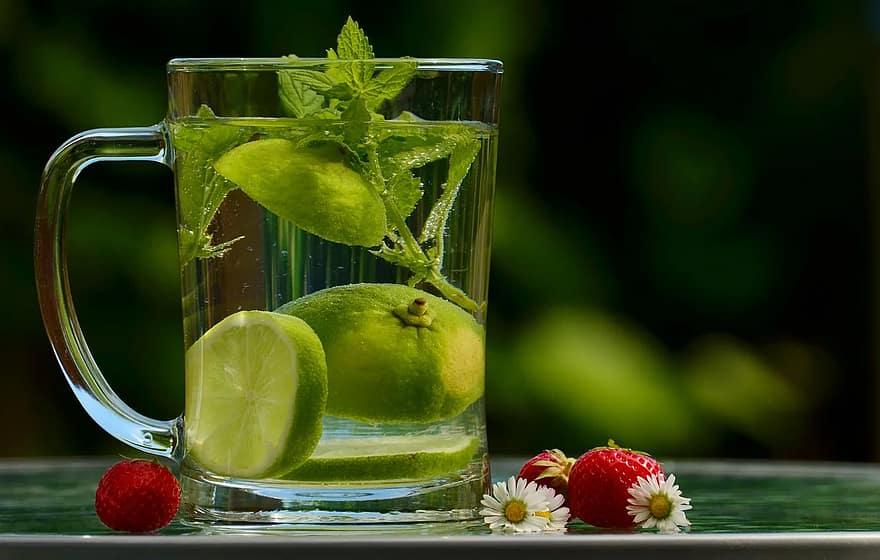 water-drink-detox-detox-water-lemon-zitronrnscheibe-lemon-balm-glass-refreshment