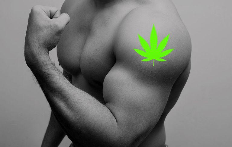 weed-gym-1518567727